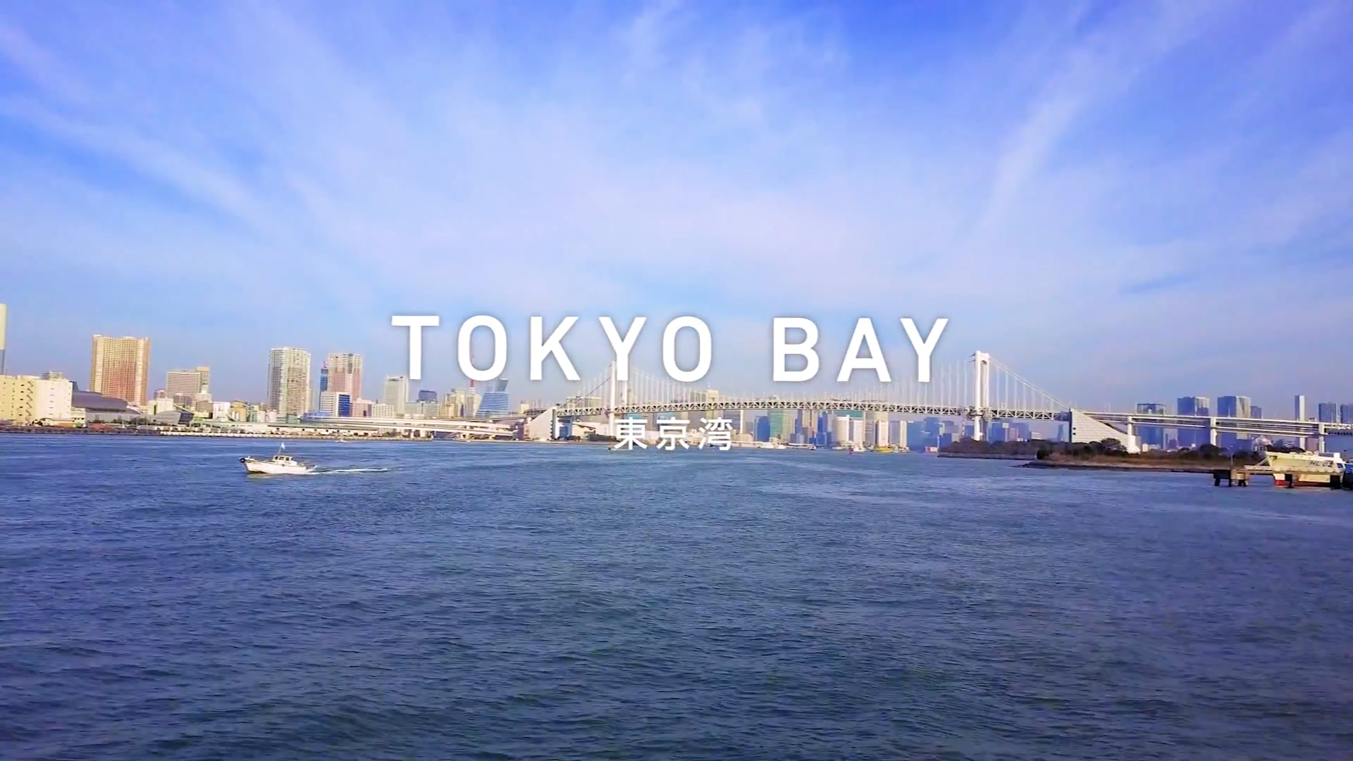 東京湾レインボーブリッジ